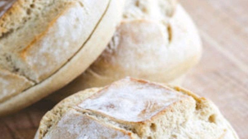 GIOTTO VENEZIANO (italian sourdough roll)