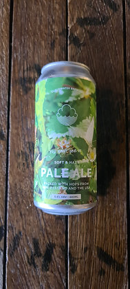 Cloudwater Pale Ale You Can't See It