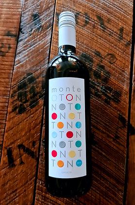 Monte Oton 2019