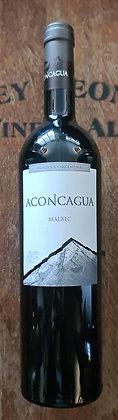 Aconcagua  2018
