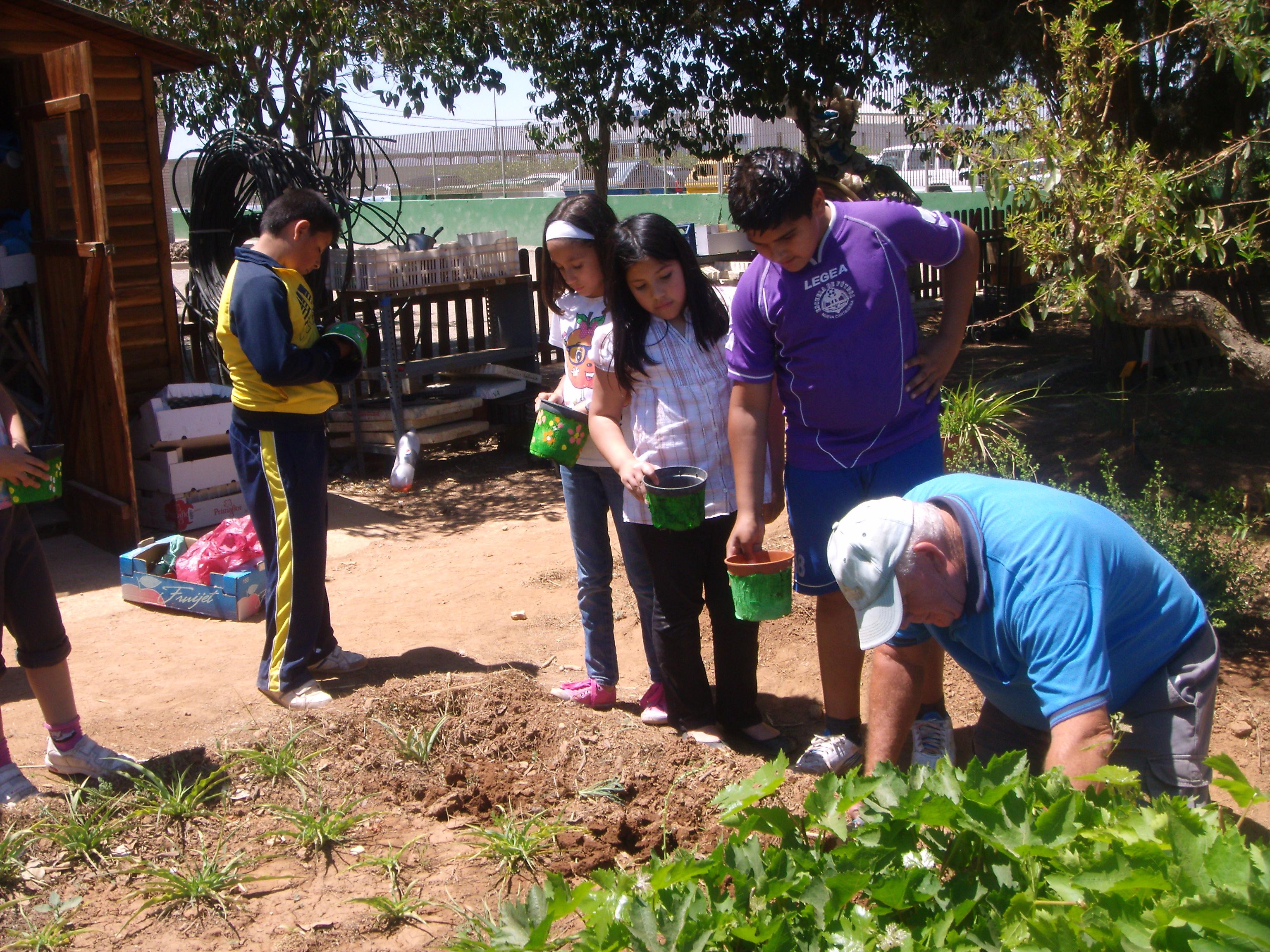 huerto mayo2012 005