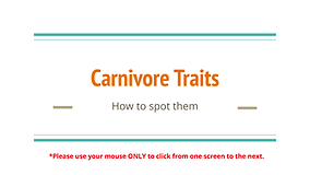 Carnivore Skull Traits_Page_01.png