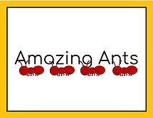 Updated_ Crystal K- Amazing Ant Lesson 0