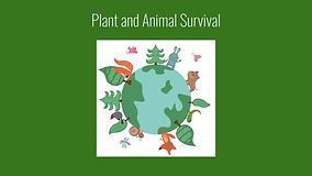 Pland and Animal Survival - Main.jpg