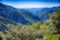 angeles-national-forest.jpg