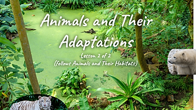 Animals and Adaptations_Page_01.png