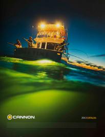 Great Lakes Salmon Fishing