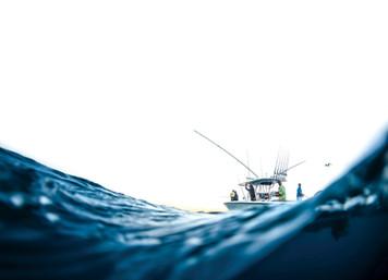 West Palm Sportfishing