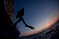 Divers, South Carolina Coast
