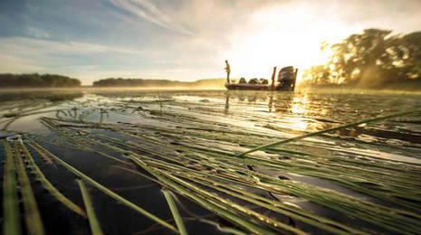 Minnesota Rice Grass Fishing