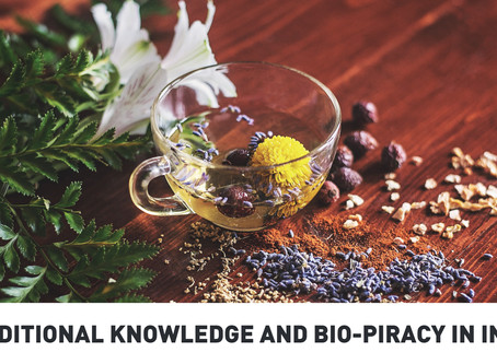 Traditional Knowledge and Bio-piracy in India