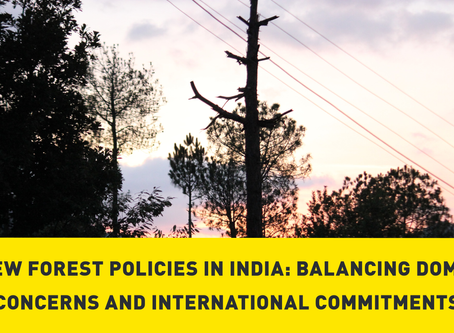 New Forest Policies in India: Balancing Domestic Concerns and International Commitments