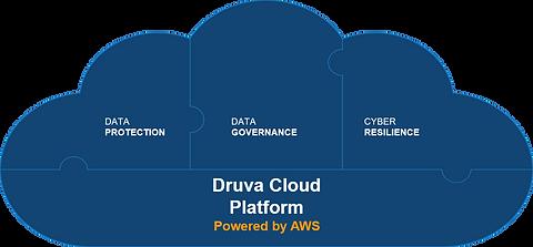 Druva cloud platform.png