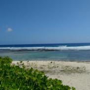 Shoreline along campsite