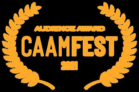 Audience Award_orange.png