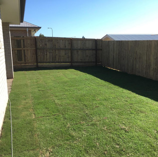 COASTwide Horticulture Turf