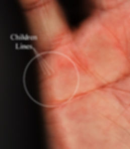 career lines on the palms palmistry