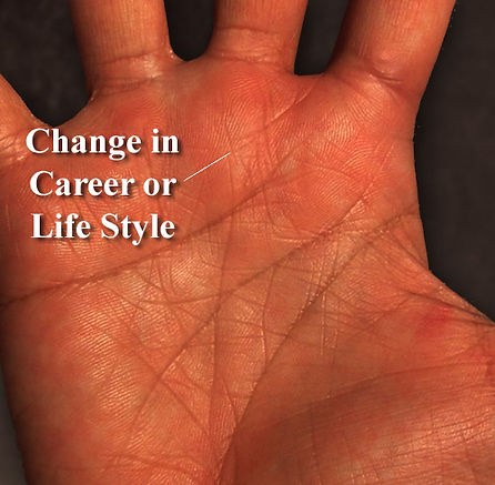career_lifestyle_palm_reading_palmistry.