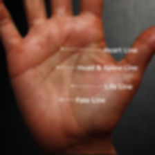 major lines in the hand palmistry