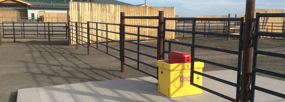 steel fence with waterer.JPG