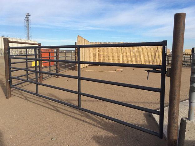 HD blue gate with slam latch.JPG