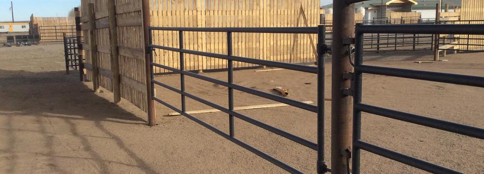steel gate on corral.JPG