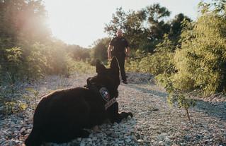 Corporal Edwards & Baak: Sherman K-9 Team | Sherman TX Photographer