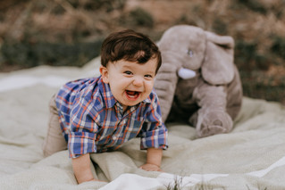 Mr. ONEderful | Stephenville TX Family Photographer
