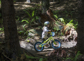 Whiskey Run Mountain Bike Trails celebrates its new routes with festival