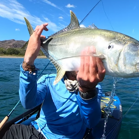 Who doesn't love a few fly fishing videos?