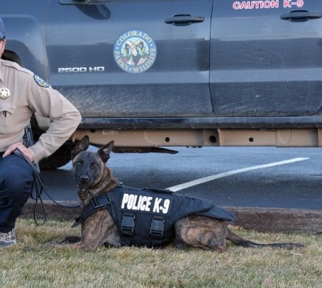 Walton Rods To Donate Directly to Colorado Parks and Wildlife K9 Program