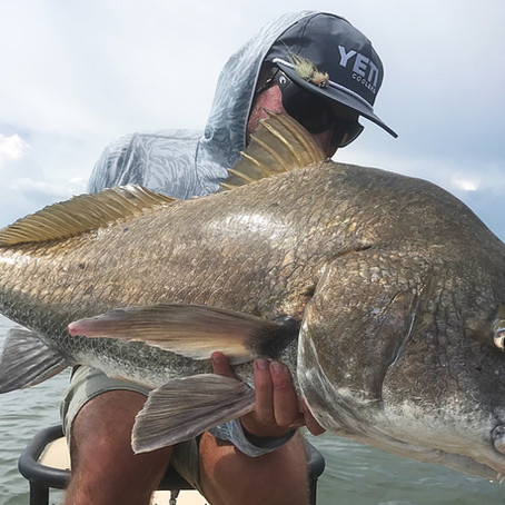 How Good is the Avari Fly Rod? It's the Daily Driver for one Florida Fly Fishing Guide