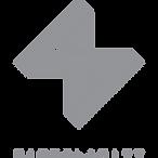 Logo SINGULARITY CONCEPT