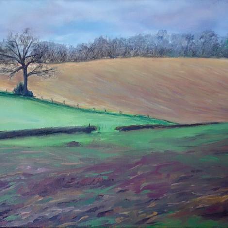 Winter's Fields
