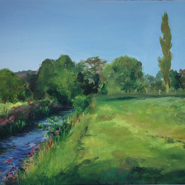 The River Culm