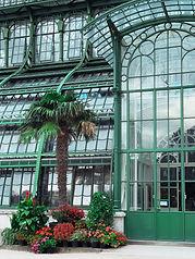 Palmenhaus.jpg