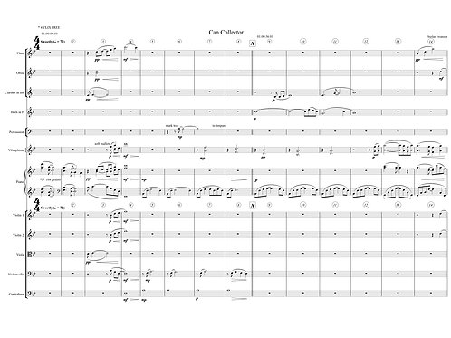 CAN COLLECTOR (chamber orchestra)