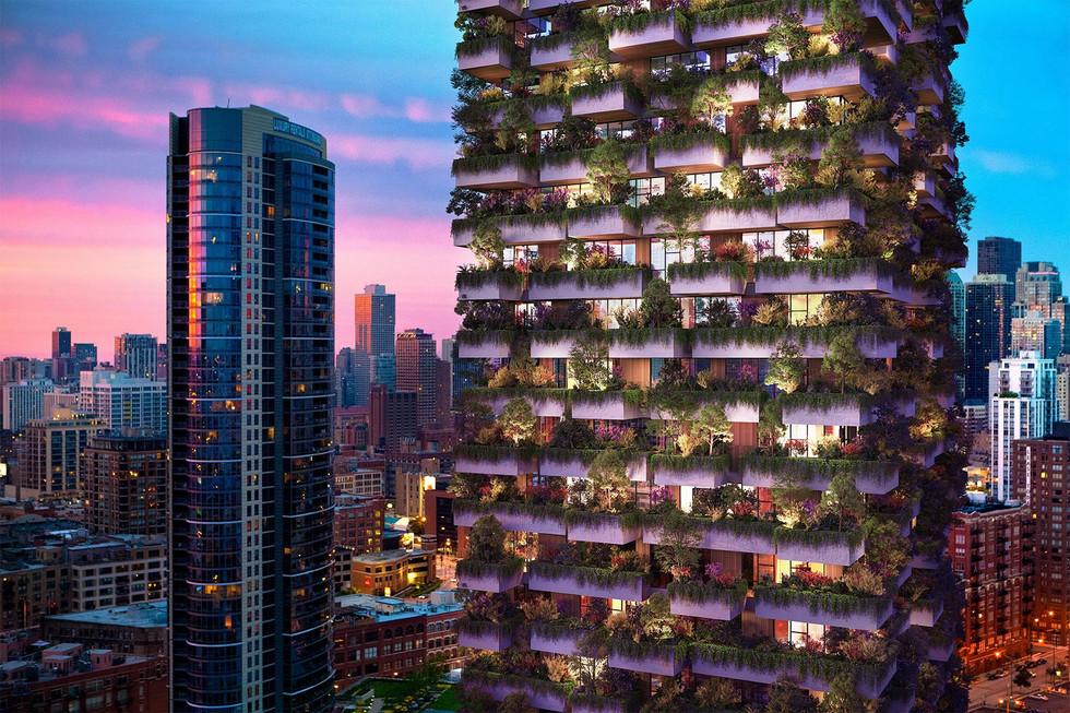 Green Roof Chicago .jpg