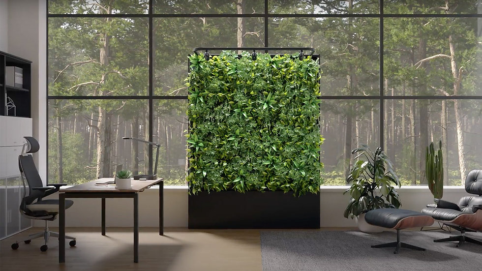 Model Z Living Wall Indoor.jpg