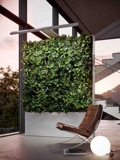 Zauben Living Wall White Side.jpg