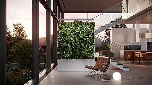 Zauben Living Wall .jpg