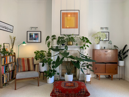 The Consolations of an Indoor Garden