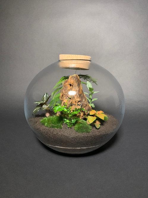 Globe Terrarium