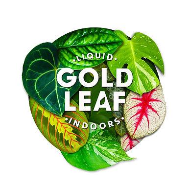 Liquid Gold Leaf Plant Feed