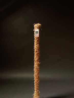 Medium Moss Pole 80cm