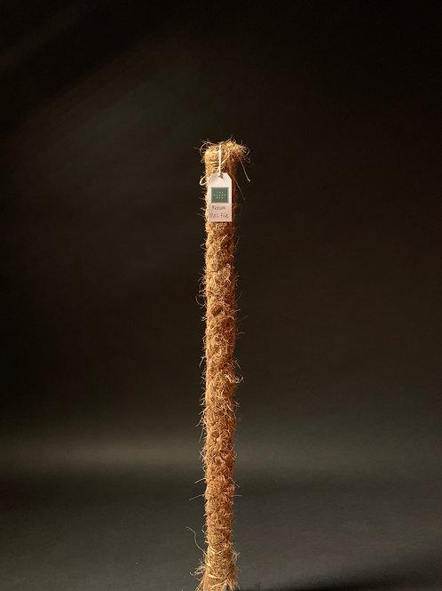 Medium Moss Pole 80cm