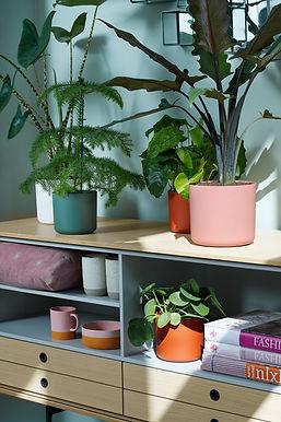 Eco friendly plant pots 14cm