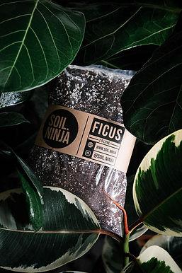 Ficus Soil Mix 5 Litre