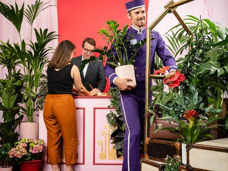 You're going on holiday! But what to do with your plants?