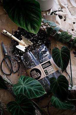 Monstera & Philodendron Soil Mix 5 Litre
